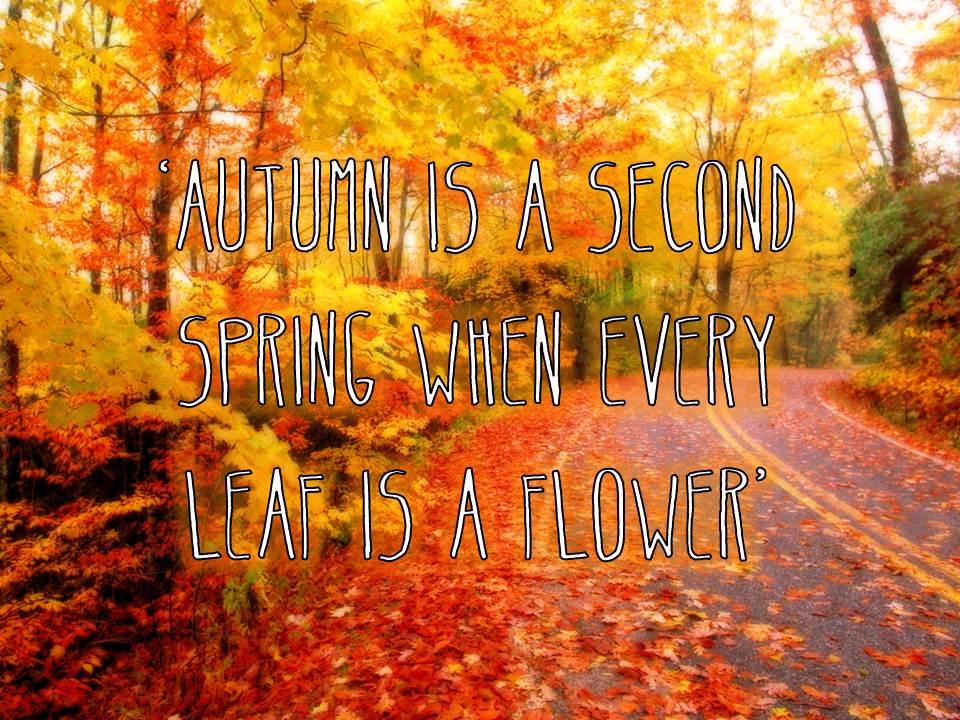 Autumn Quote.jpg